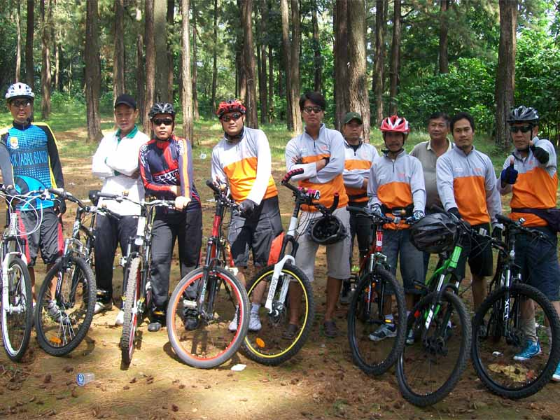 Teklok Sampai ke hutan Pinus euy 2011